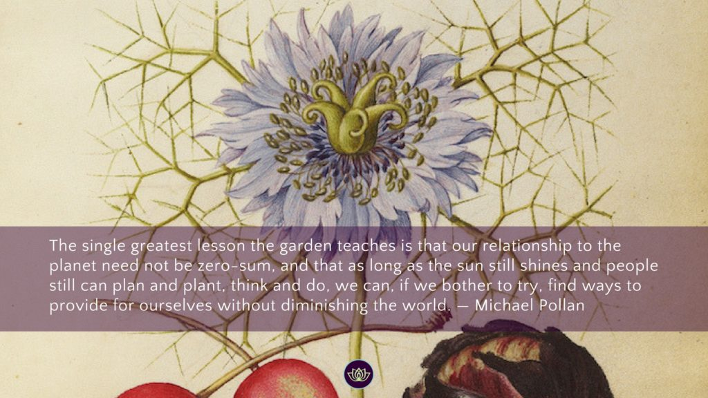 Balcony Gardening Benefits Quote Michael Pollan