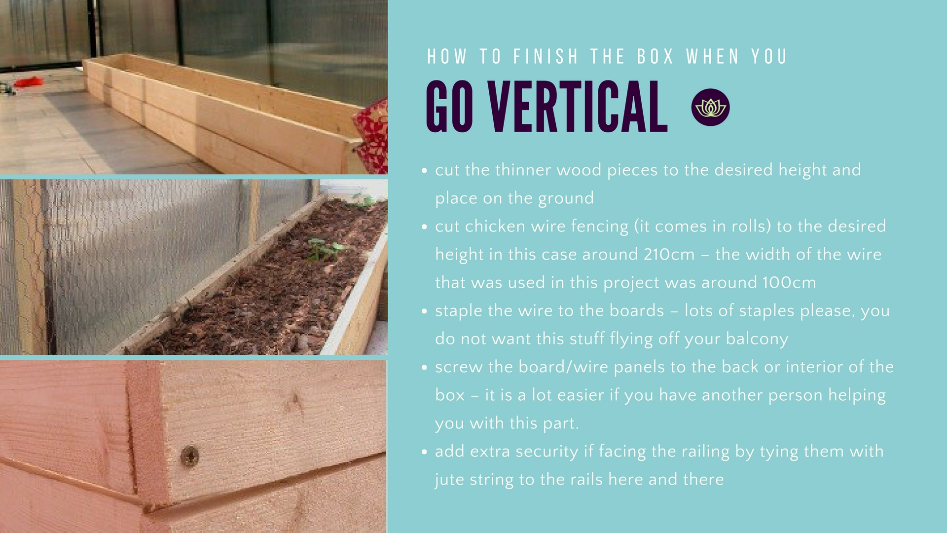 Balcony Gardening Go Vertical with vines How to