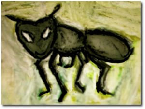 drawing of an ant