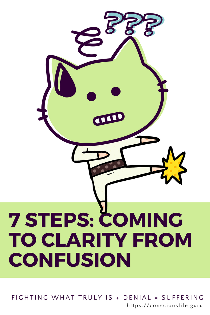fighting cat - seven steps, coming to clarity from confusion on conscious life space