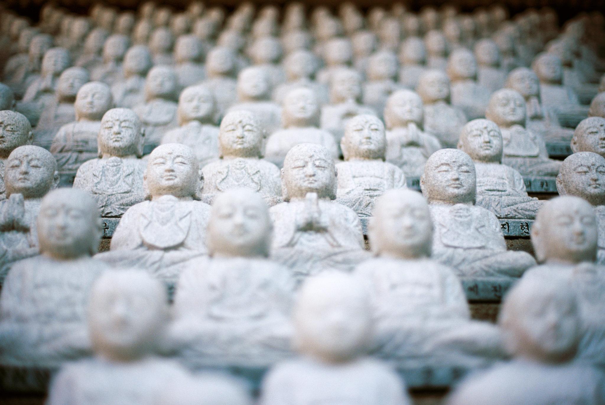 Buddha statues photo credit Jed Adan CC0