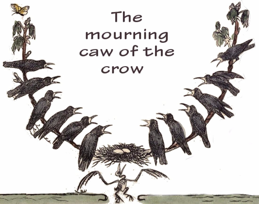 crows mourning historic illustrations public domain