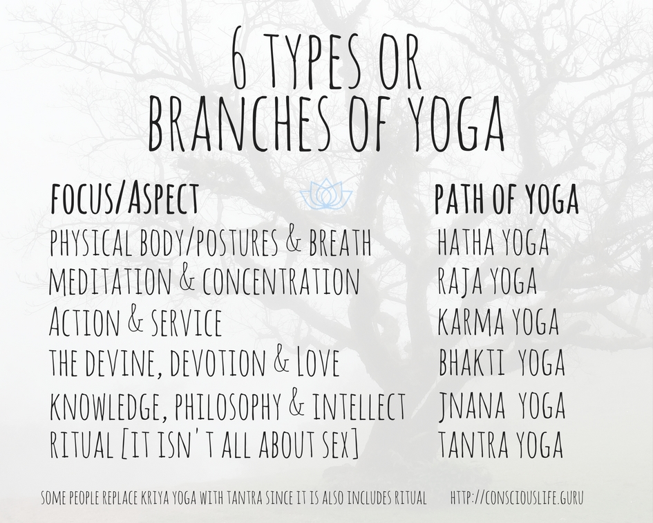 6 branches of yoga or yogic paths with their focus and aspect - conscious life space