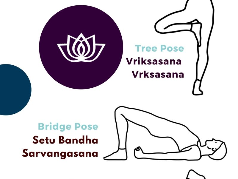 Introduction to Asanas – 5 Yoga Poses Infographic