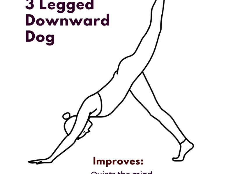 Yoga Asana – 3 legged downward dog