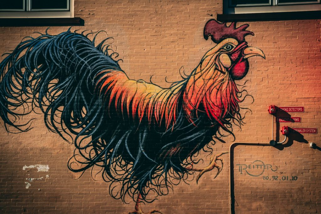 rooster street art photo by Edgar Moran CCO