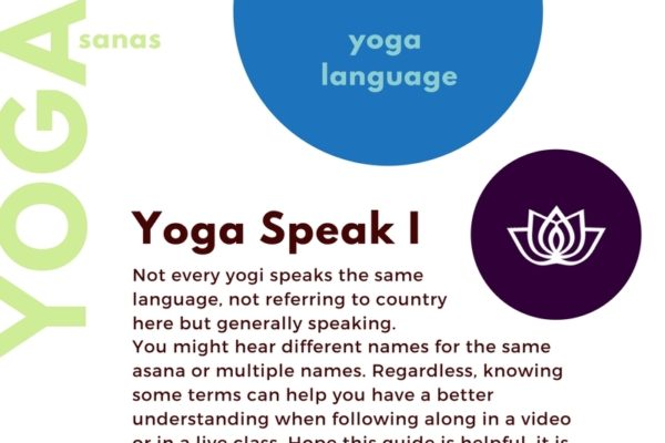 Yoga Pose Terms Language Infographic