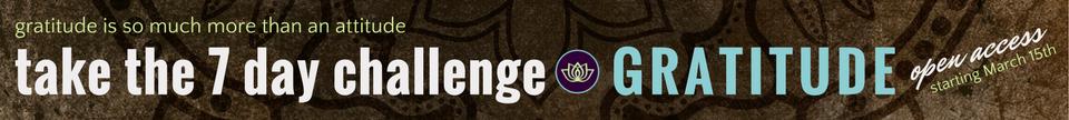 Conscious Life Space 7 day gratitude challenge banner - https://conscious-life-space.teachable.com/