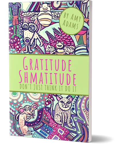Gratitude Shmatitude Book by Amy M Adams