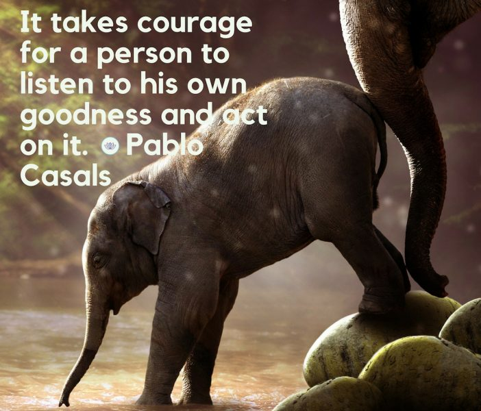 take-action-pablo-casals-quote