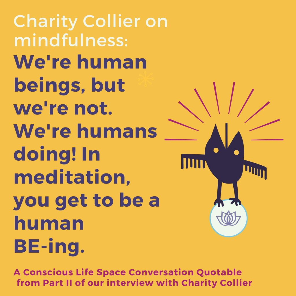 We're human beings, but we're not. We're humans doing! In meditation, you get to be a human be-ing! - Charity Collier