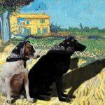 Dogs in babuskas