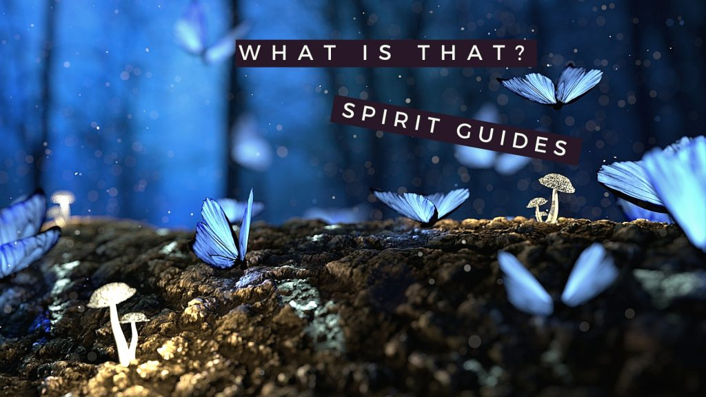 what is that spirit guides - landscape with butterflies and mushrooms