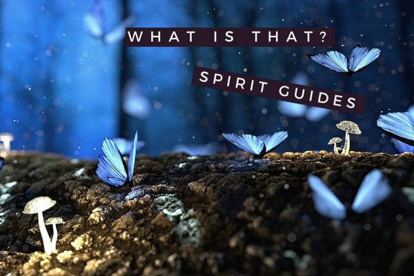 What is that? spirit guides
