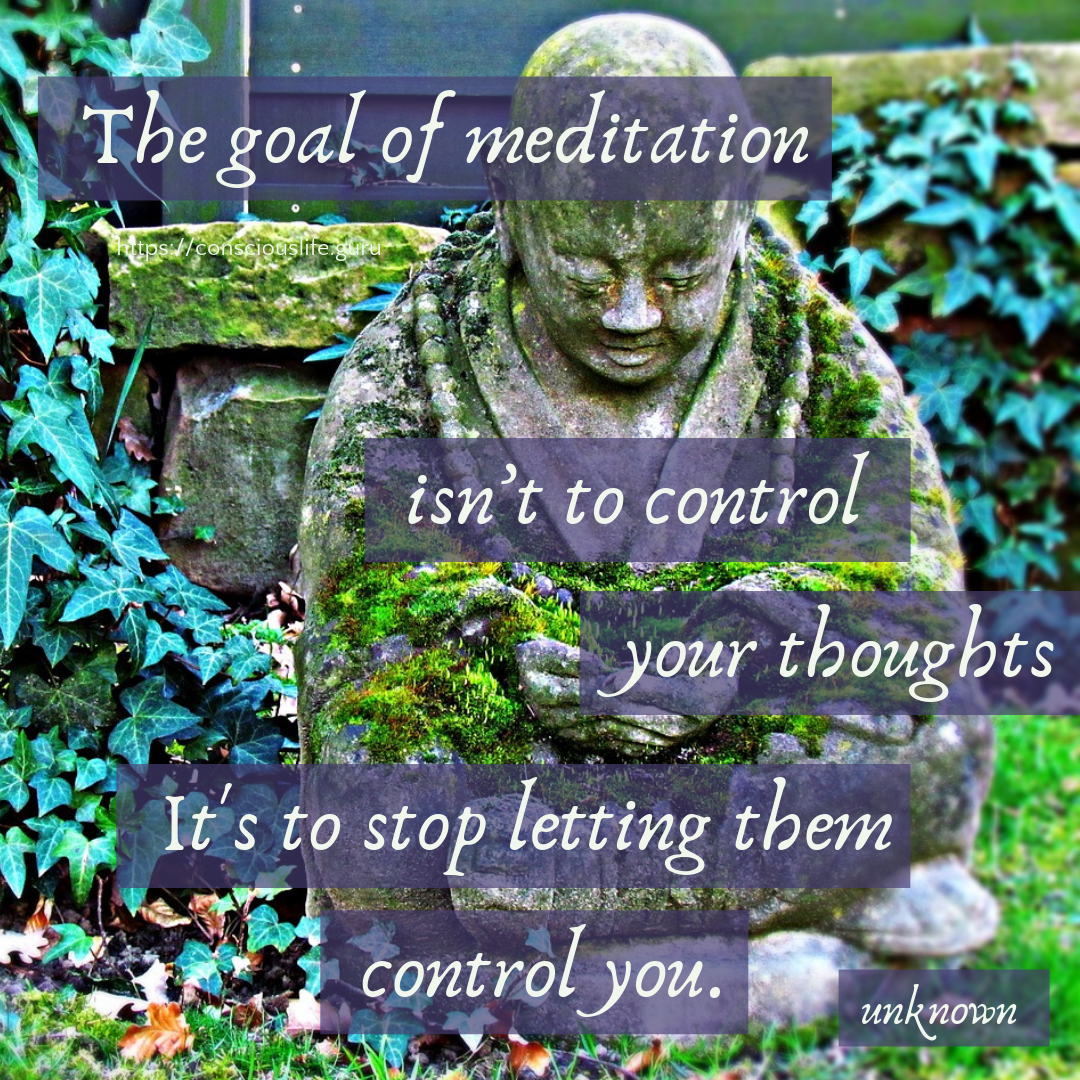 The goal of meditation isn't to control your thoughts, it is to stop letting them control you.